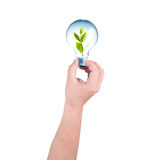 Hand holding a light bulb with plant inside. Royalty Free Stock Images