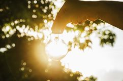 Hand holding light bulb with sunset, concept use alternative ene Royalty Free Stock Photo