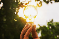 Hand holding light bulb with sunset  energy concept Royalty Free Stock Images