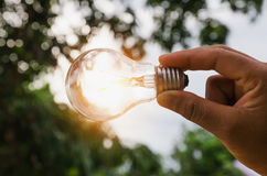 Hand holding light bulb with sunset energy concept Stock Photos