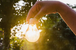 Hand holding a light bulb  sunset power concept Royalty Free Stock Images