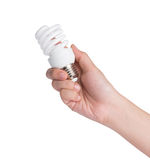 Hand holding light bulb on white background Stock Photography
