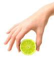 Hand holding lime Stock Photography