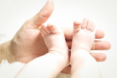 Hand holding little feet Stock Photography