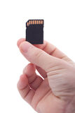 Hand holding memory card Stock Photography