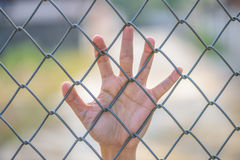 Hand holding on Metal Grille Stock Photos