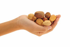 Hand Holding Mix Nuts. On Isolated Background stock photos