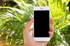 Hand holding mockup smartphone with tree background Royalty Free Stock Images