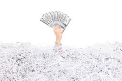 Hand holding money in a pile of shredded paper Royalty Free Stock Photos