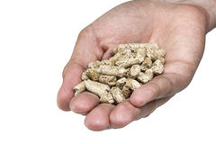 Hand holding pellets Royalty Free Stock Photos