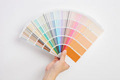 Hand holding multicolored cardboards. Spread against a gray wall royalty free stock image