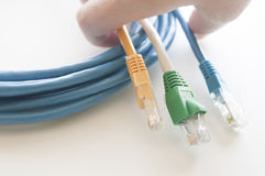 Hand holding network cables Royalty Free Stock Images