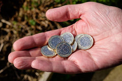 Hand holding new pound coins stock image