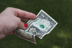 Hand holding one dollar bill Royalty Free Stock Photos