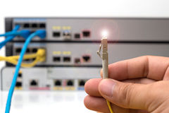 hand  holding optic fiber cables with connectors Stock Image