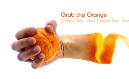Hand holding an orange Stock Photo
