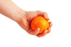 Hand holding orange Stock Photos