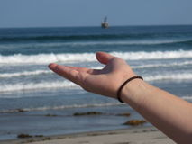 Hand Holding out to the ocean Stock Photography