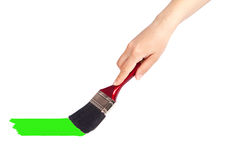 Hand Holding a paint brush Royalty Free Stock Photo