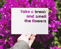 Hand holding paper with take a break and smell the flowers word cut out royalty free stock image