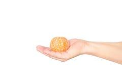Hand holding Peeled tangerine segments isolated on white background Stock Photography