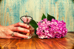 Hand holding a perfume and hydrangea wooden background Stock Image