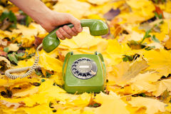 Hand holding phone receiver in autumn park Stock Photography