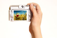 Hand holding photo camera Royalty Free Stock Photos