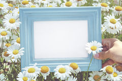 Hand holding picture frame in flower Royalty Free Stock Images