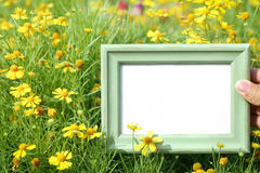 Hand holding picture frame in flower Royalty Free Stock Photography