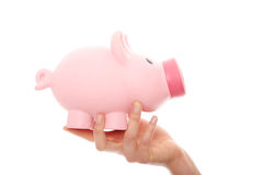 Hand holding a piggy bank Royalty Free Stock Photos