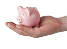 Hand holding piggy bank Royalty Free Stock Image
