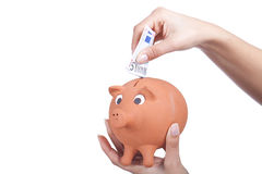 Hand holding a piggy bank and some bills. Woman hand holding a piggy bank and some bills Royalty Free Stock Images