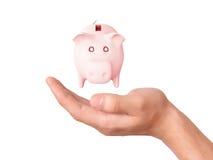 Hand holding pink piggy bank Stock Photos