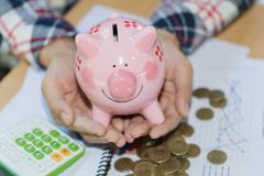 Hand holding pink piggy bank, Save money and financial investm royalty free stock photo