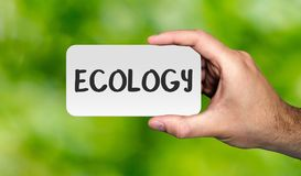 Hand holding placard with word `ECOLOGY`.ECO concept. stock image