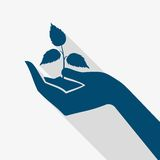Hand Holding Plant Sprout Stock Images