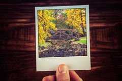 Hand holding polaroid photograph of autumn scene in Australian g Royalty Free Stock Images