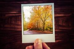 Hand holding polaroid photograph of rural road among autumn tree Royalty Free Stock Photo