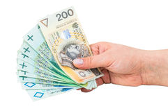 Hand holding polish banknotes Royalty Free Stock Images
