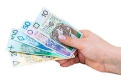 Hand holding polish banknotes Royalty Free Stock Image