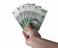 Hand holding polish zloty bills isolated on white Royalty Free Stock Image