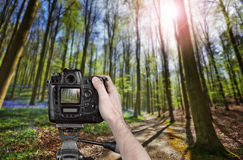 Hand holding a professional camera Royalty Free Stock Images