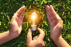 Hand holding protection lightbulb on grass. concept saving energ. Y Royalty Free Stock Photos