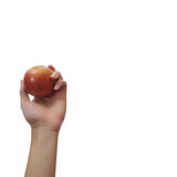 Hand holding red apple Royalty Free Stock Photography