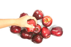Hand holding red apple. Hand holding red fresh apple on white Stock Photo
