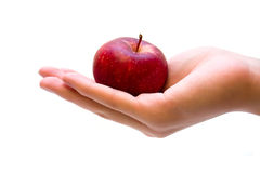 Hand holding red apple. On white royalty free stock photo