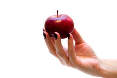 Hand holding red apple Stock Images