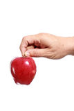 Hand holding a red apple Stock Photos