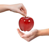 Hand holding red apple. Isolated on white Royalty Free Stock Images